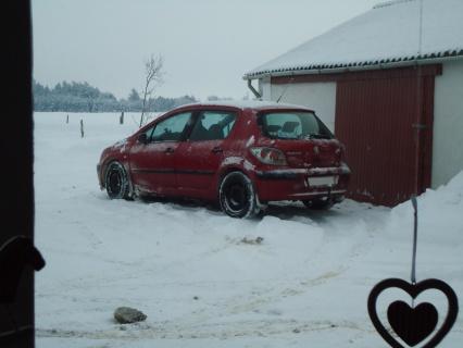 I sne står Kia og Peugeot i skjul